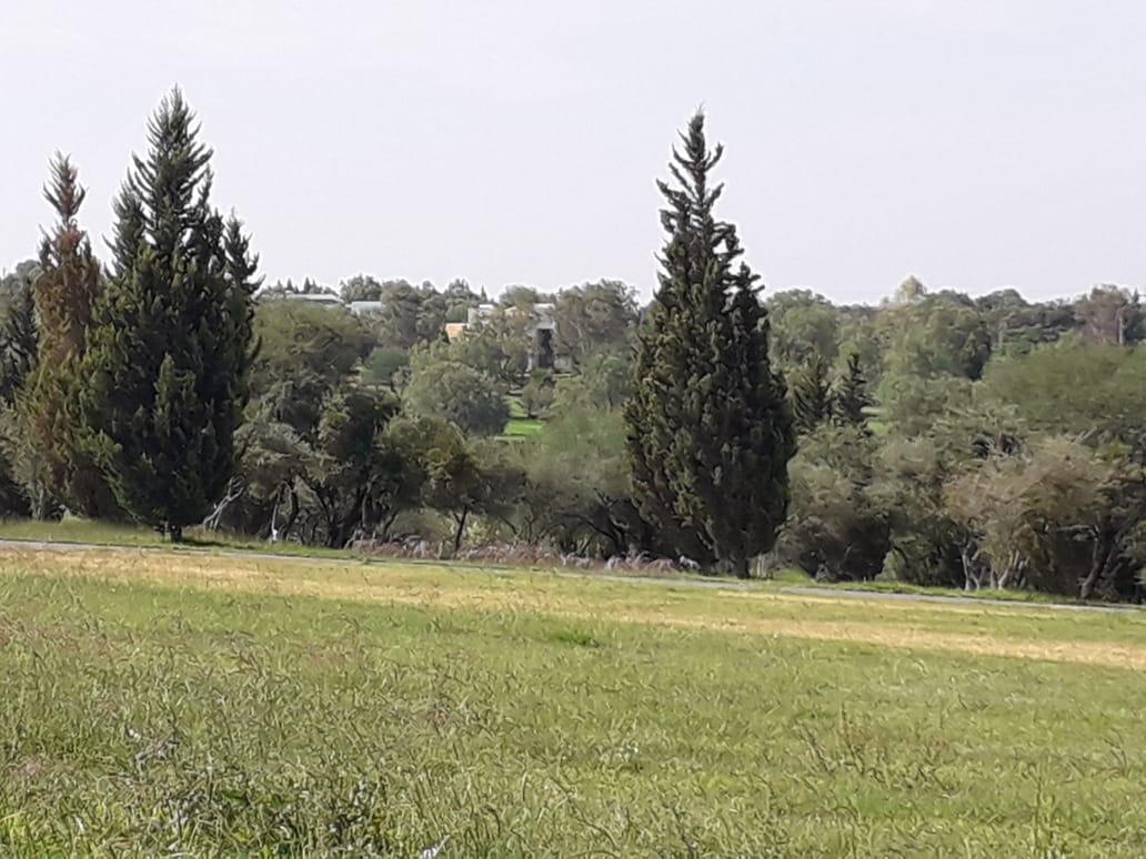 Bosque Edén