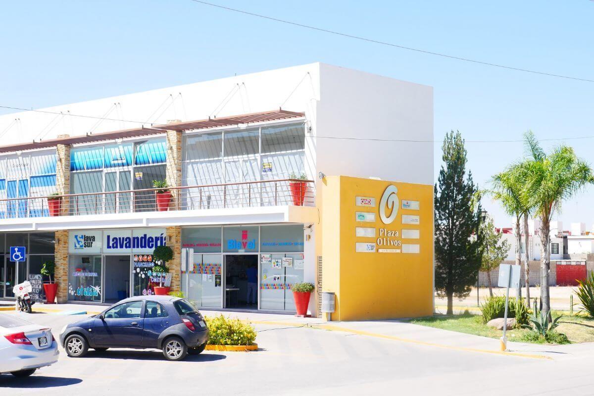 Plaza Comercial Los Olivos