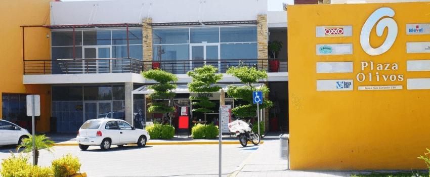 Plaza Comercial LOS OLIVOS: Un mundo de oportunidades