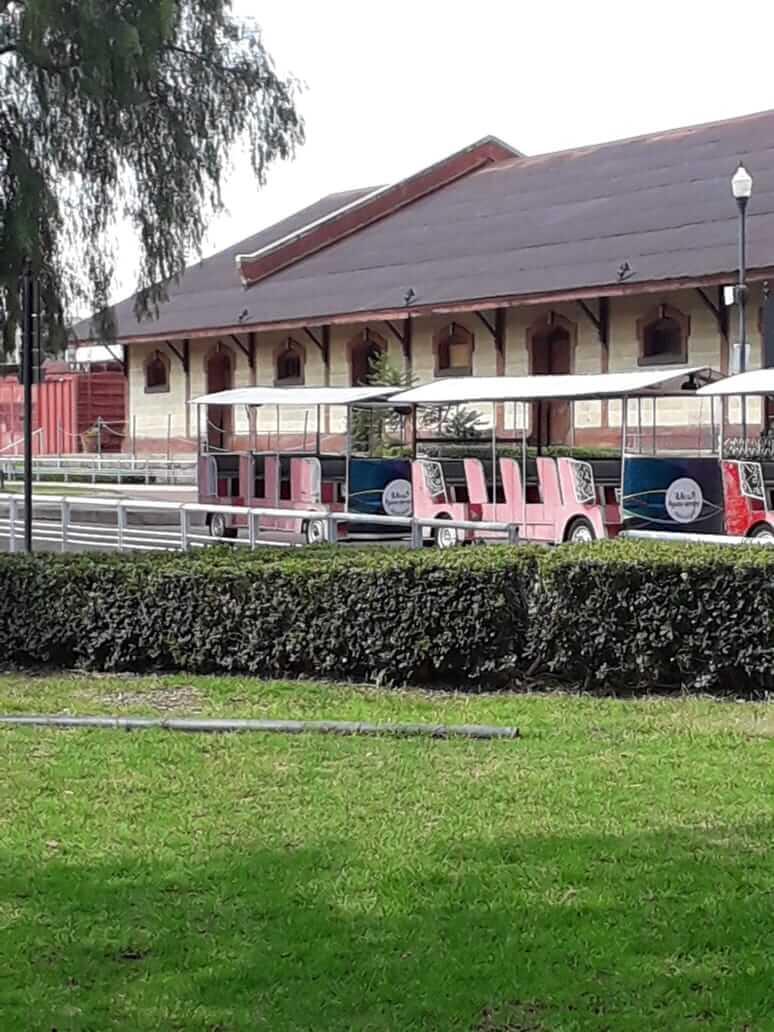 Casas de Aguascalientes